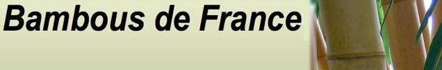 BAMBOUS DE FRANCE